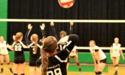 thi công sân bóng chuyền