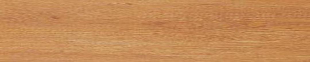 Sàn nhựa Galaxy Vân gỗ MSW 1015