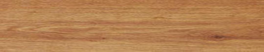 Sàn nhựa Galaxy Vân gỗ MSW 1014